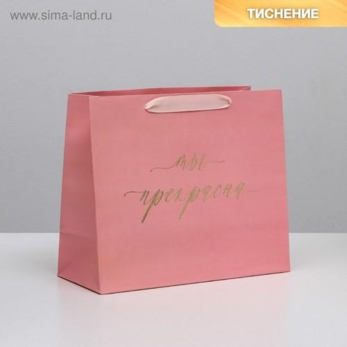 Пакет ламинированный горизонтальный «Ты прекрасна», ML 27 × 23 × 11,5 см